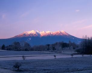 朝の木曽御岳山と霜の開田高原の写真素材 [FYI03269980]