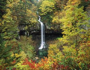 秋の曽利滝の写真素材 [FYI03270491]
