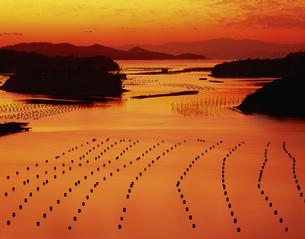 登茂山より望む英虞湾夕景の写真素材 [FYI03270538]