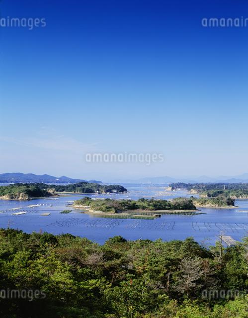 登茂山より望む英虞湾の写真素材 [FYI03270545]