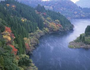 霧漂う秋の蜂の巣湖 中津江村の写真素材 [FYI03270884]