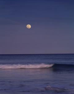 月と海 伊豆 静岡県の写真素材 [FYI03270897]