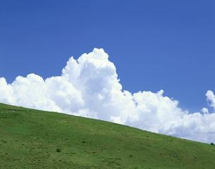 草原と夏の空 霧ケ峰 諏訪市  長野県の写真素材 [FYI03270909]