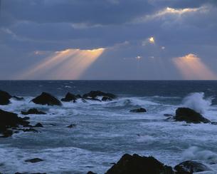 岩礁の夕景 越前海岸 福井県の写真素材 [FYI03270921]
