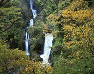 紅葉の十二滝の写真素材 [FYI03270937]