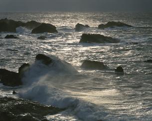 光る海と岩礁 越前海岸 越廼村 福井県の写真素材 [FYI03270939]