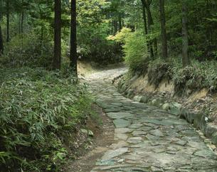 旧中山道の石畳の道 中津川市 岐阜県の写真素材 [FYI03270947]