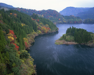 霧漂う秋の蜂の巣湖の写真素材 [FYI03270952]