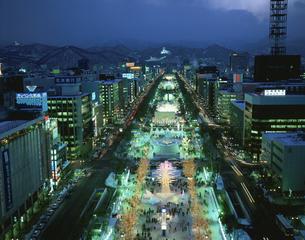 札幌雪まつり(大通公園夜景)の写真素材 [FYI03271491]
