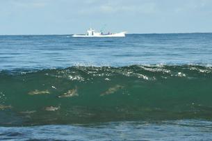 鮭の群れと漁船の写真素材 [FYI03271870]