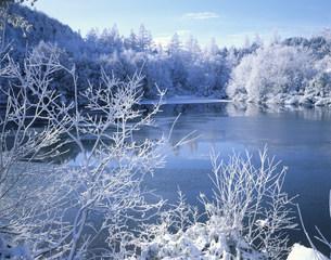冬の三角池の写真素材 [FYI03273586]