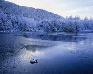 志賀高原の霧氷と三角池の写真素材 [FYI03273615]