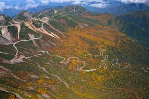 乗鞍岳、秋色のエコーラインの写真素材 [FYI03274108]