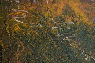 乗鞍岳、秋色のエコーラインの写真素材 [FYI03274110]