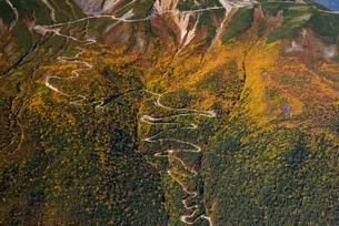 秋色の乗鞍岳のエコーラインの写真素材 [FYI03274142]