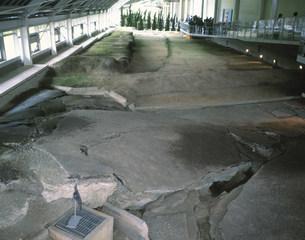 北淡町震災記念公園の写真素材 [FYI03274507]