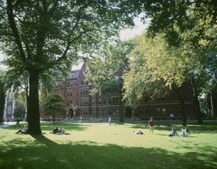 ハーバード大学のキャンパスの写真素材 [FYI03274645]