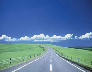 丘へ続く道の写真素材 [FYI03274720]