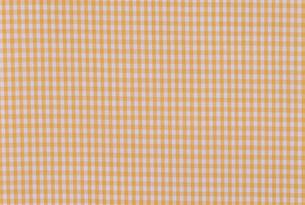 ギンガムチェック 黄色の写真素材 [FYI03274747]