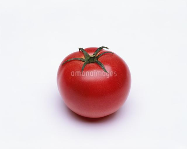 トマトの写真素材 [FYI03274752]