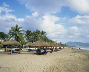 ニャチャンビーチの写真素材 [FYI03275824]