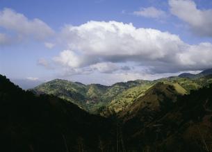 ブルーマウンテンの山々の写真素材 [FYI03276891]