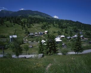 マラムレッシュの村 6月 ルーマニアの写真素材 [FYI03277618]