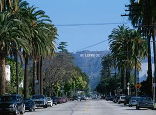 ハリウッドの看板の写真素材 [FYI03280446]