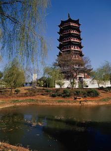 雲華寺 瑞応塔の写真素材 [FYI03281513]
