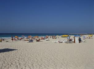 ジュメイラビーチの人々  ドバの写真素材 [FYI03281635]