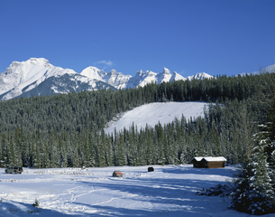 フェアホルム山脈    カナダの写真素材 [FYI03281951]