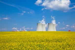テメリン原子力発電所と菜の花畑の写真素材 [FYI03284208]