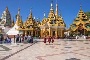 ヤンゴンのシュエダゴォン・パヤーの写真素材 [FYI03285359]