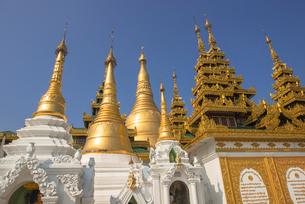 ヤンゴンのシュエダゴォン・パヤーの写真素材 [FYI03285381]