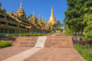 ヤンゴンのシュエダゴォン・パヤー参道の写真素材 [FYI03285384]