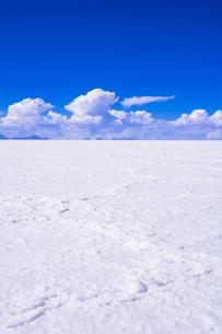 乾季のウユニ塩湖の写真素材 [FYI03285560]