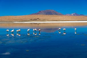 カニャパ湖の景観の写真素材 [FYI03285581]