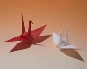 折鶴の写真素材 [FYI03285798]
