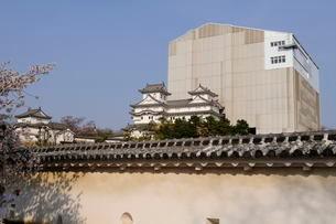 国宝・姫路城西の丸から天守閣修復中の風景の写真素材 [FYI03285973]