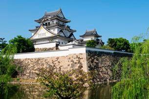 岸和田城の写真素材 [FYI03285989]