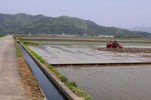 近江平野の田園田植えの農作業風景の写真素材 [FYI03286152]