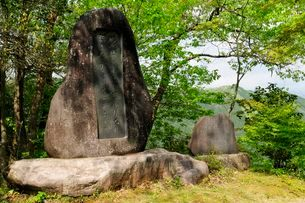 群上八幡城内石碑の写真素材 [FYI03286153]