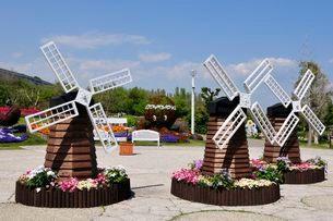 淡路島 国営明石海峡公園 ミニ風車の写真素材 [FYI03286543]