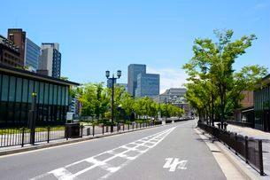 中之島公園から中央公会堂を見るの写真素材 [FYI03286603]