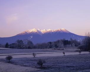 冬の高原と木曽御岳山 朝景の写真素材 [FYI03286732]