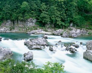 新緑の飛騨川 中山七里の写真素材 [FYI03286807]