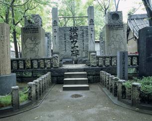 横綱力士碑 富岡八幡宮の写真素材 [FYI03287055]