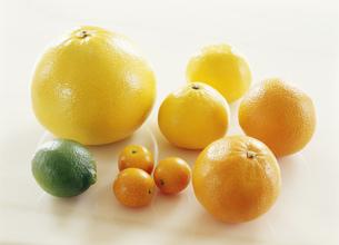 柑橘類メローゴールド他の写真素材 [FYI03288618]