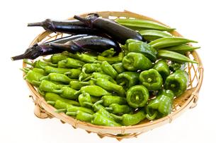 カゴの中の野菜 シシトウ・ピーマン・ナス・オクラの写真素材 [FYI03289759]