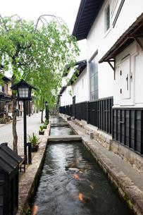 瀬戸川と白壁土蔵街の写真素材 [FYI03289889]